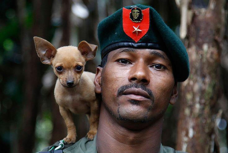 Август 2016 года. Повстанец революционных вооруженных сил Колумбии (FARC) позирует для фото в джунглях со своей собачкой