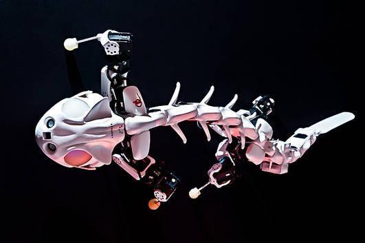 プルートーボット(Pleurobot)。イェーナ大学などの団体による脊椎動物の動きをシミュレーションすることに対応するボットの一つ。X線システムなどを使用して分析した生物の化石からそれらの動きを研究する。