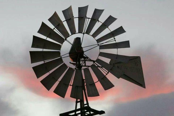 For the Love of Windmills Western Australia by Amanda Paul