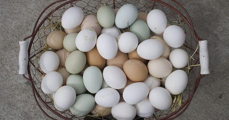 ¿Por cuánto tiempo se deben hervir los huevos para hacer huevos duros?. Un huevo duro es un huevo que se ha cocinado hasta que el interior ya no es húmedo o pegajoso. Los huevos duros se utilizan para hacer ensalada de huevo y huevos rellenos. También se cortan y se usan en ensaladas verdes y ensaladas de papa. En tiempo de Pascua, los huevos se hacen duros y se tiñen para hacer huevos de Pascua. Aprende la técnica ...