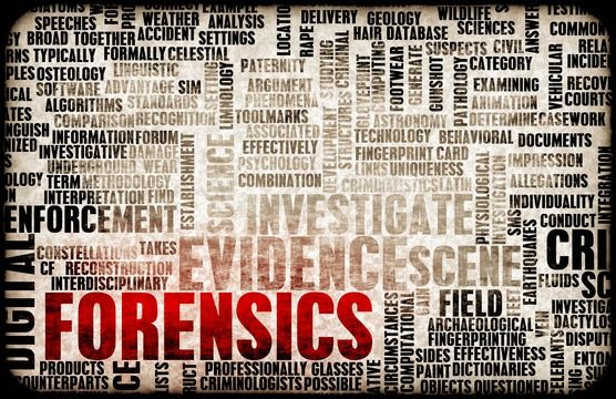 4 Most Common Forensic Accounting Investigation Cases - http://truthbehindnumbers.com/most-common-forensic-accounting-investigation-cases/