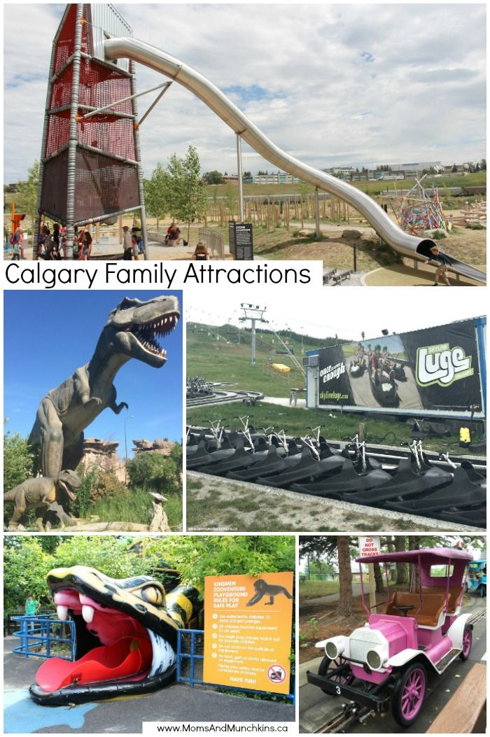 Calgary Family Attractions - fun activity ideas for kids of all ages and adults in Calgary - Calgary Zoo, Telus Spark, Calaway Park and more!