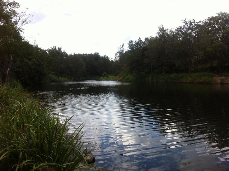 Swimming in the South Pine River | Make the Day