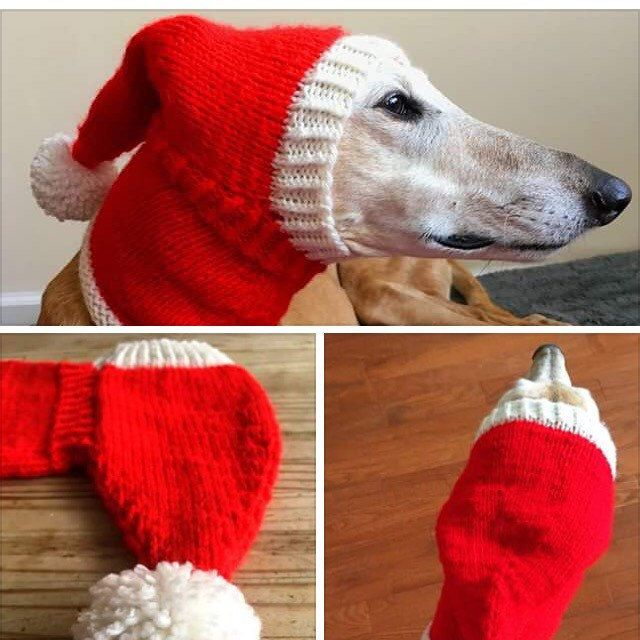 Browse unique items from CouchPotatoDogKnits on Etsy, a