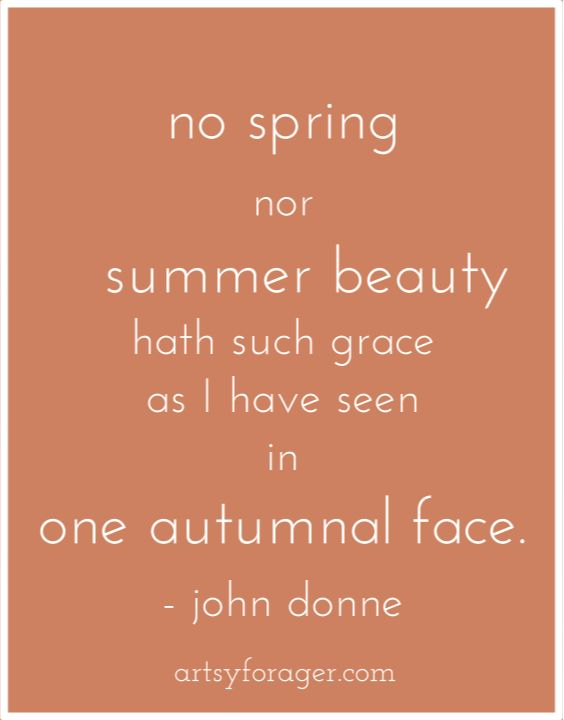 metaphysical poetry and jhon donne Get an answer for 'is john donne a metaphysical poet' and find homework help for other john donne questions at enotes.