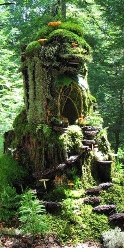 Get creative with your outdoor fairy gardens! We love this tree stump