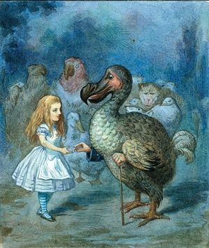 Alice and the Dodo Illustration: Sir John Tenniel/Alice's Adventures in Wonderland: Illustrations © Macmillan 1911