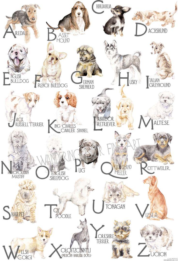 how to choose breeding name