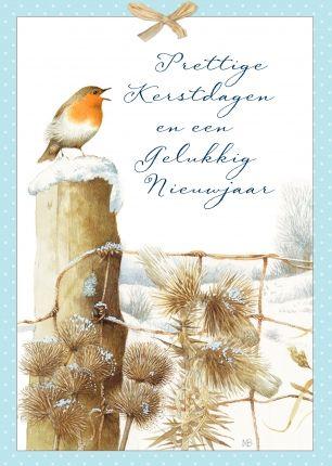 1520 best marjolein bastin images on pinterest marjolein bastin mb greeting card bird artmarjolein bastinspecial m4hsunfo