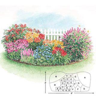 Butterfly Bush In Garden Beds