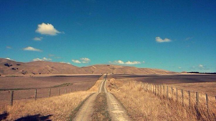 Te Muna Road farmland by Ben