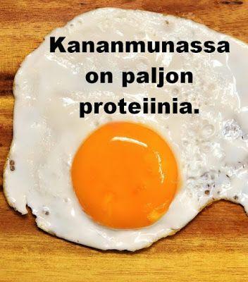 proteiinijauhe laihdutus