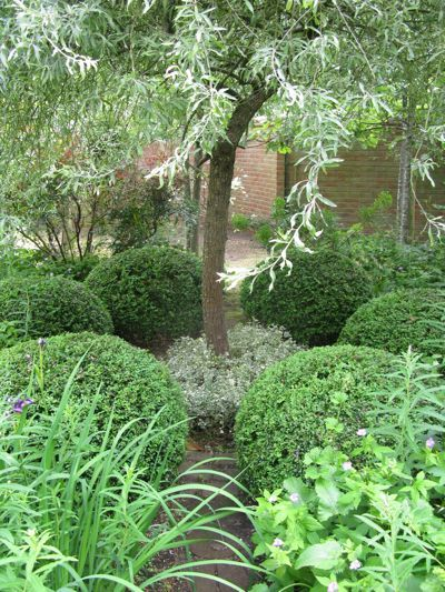 litet hus med trädgård: juni 2012