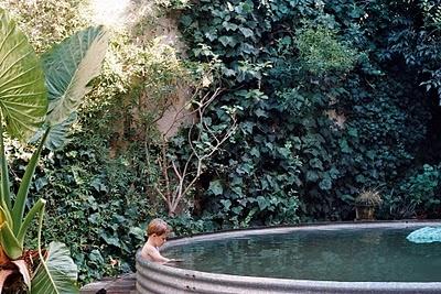 Galvanized Stock Tank Pool With Vines Behind Random