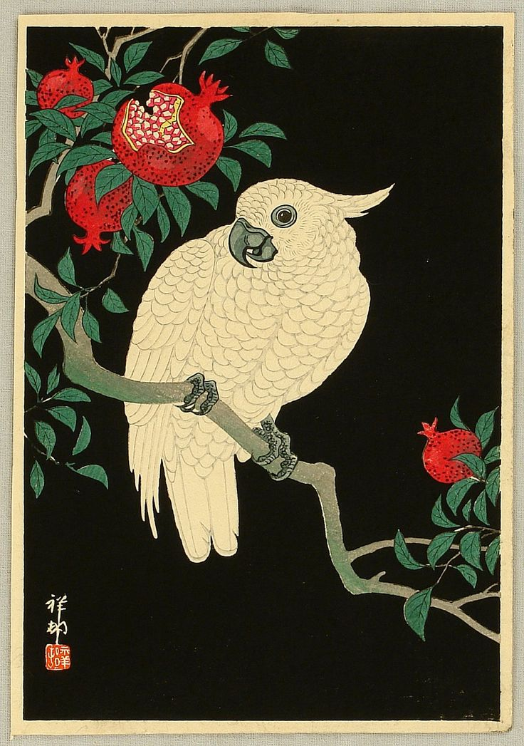 Ohara Koson Cockatoo and Pomegranate ca. 1930s.