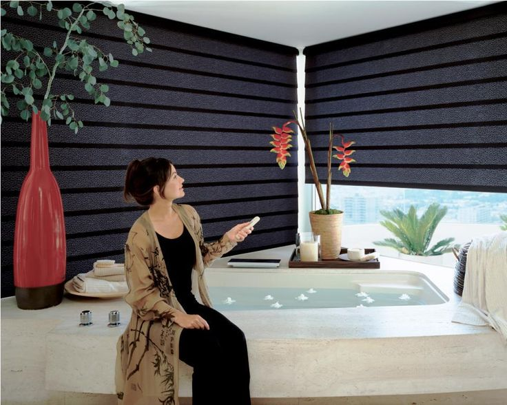 Cool Electric Blinds for Windows - http://window.cwsshreveport.com/electric-blinds/