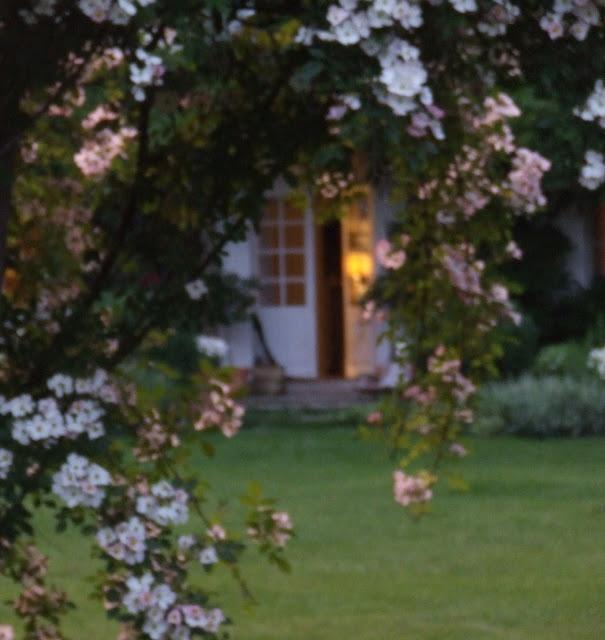 1149 Best Moonlight Garden Images On Pinterest