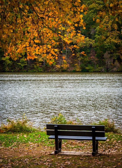 Wish I could sit on that bench and enjoy the view.