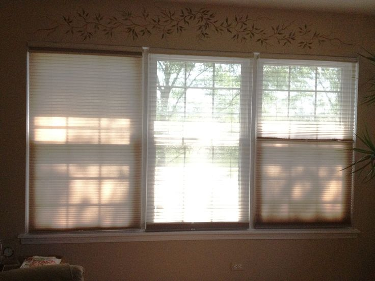 58 Best Cellular Shades Images On Pinterest Cellular