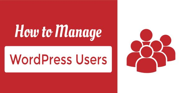How to add and manage WordPress Users