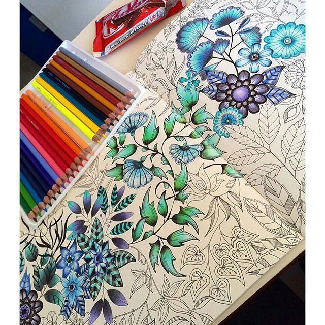 PERFEITO!!! Parabéns pelo trabalho!!!! @Regrann from @alexiameloduarte - Pra relaxar.. ✏️ #jardimsecreto #novoamor #vemférias #Regrann #florestaencantada #secretgarden #johannabasford #coloriagespouradultes #coloriage #arttherapie #arttherapy #artecomoterapia #colorindo #colorir #livrodecolorir #livrosinterativos #lapisdecor #gizpastelseco #colorirfazbem