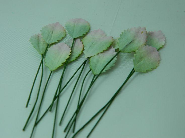 Leaves 2 tone 25mm (20pk)