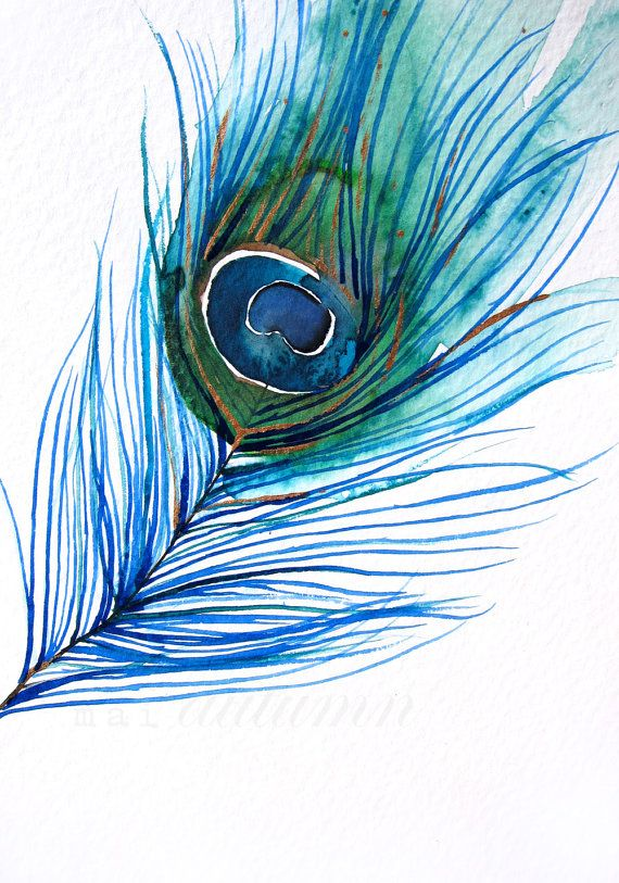Peacock feather paintings - photo#52