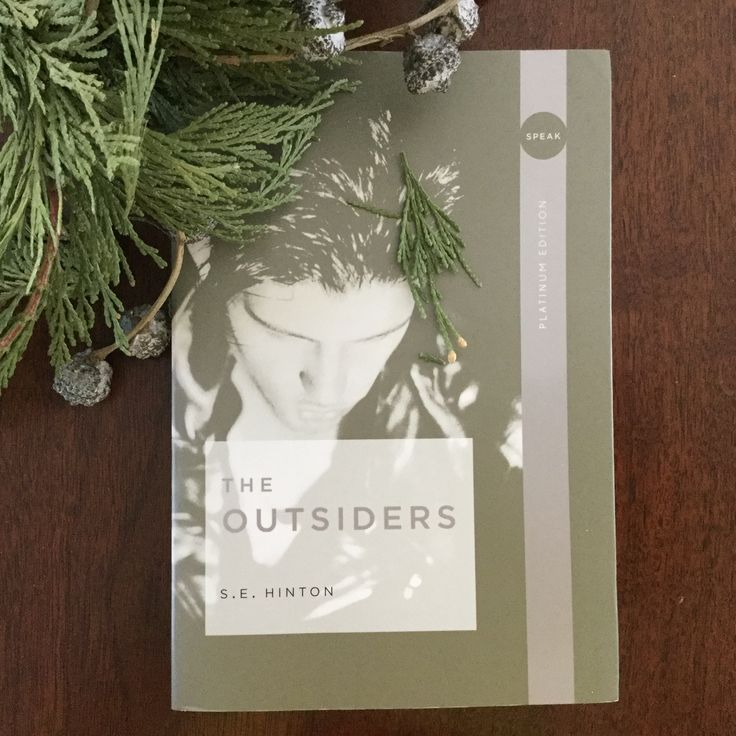 The outsiders by s e hinton ponyboys timeless story