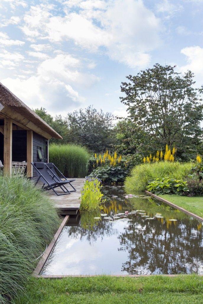 carex garden design by carolyn mullet photo
