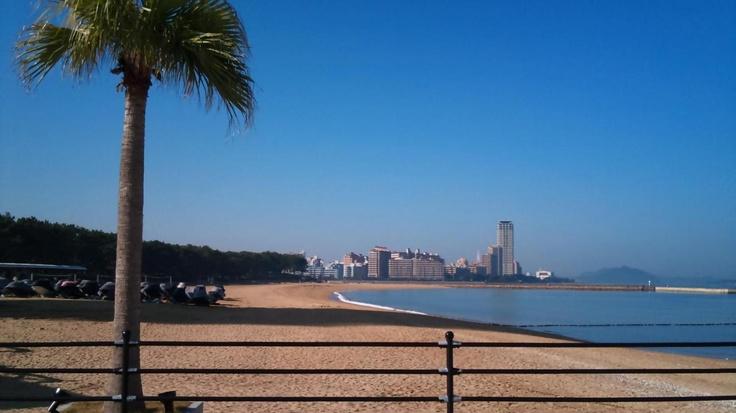 百道浜  Momochihama beach