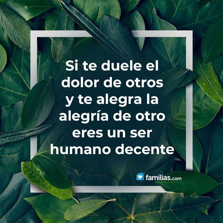 #verdades #single