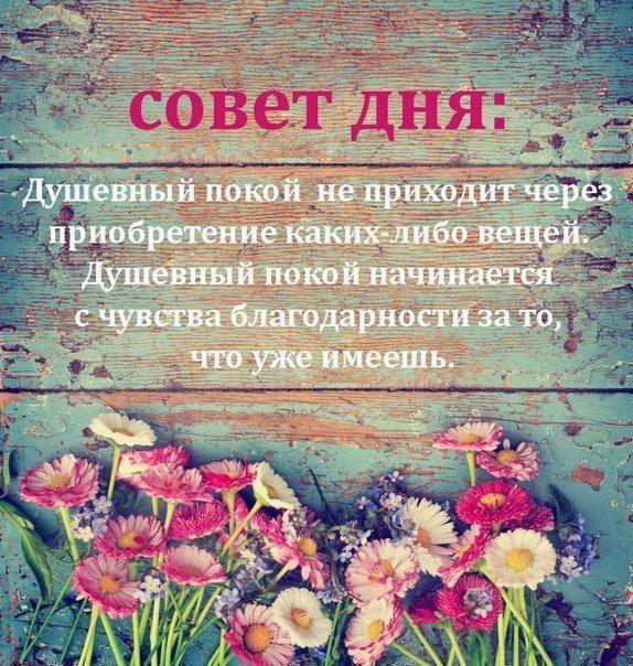 564655d04c315c36c06bb971fd20db4e.jpg (574×604)