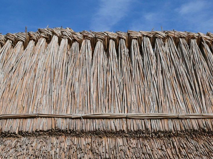 Thatched Roof England   Google Search