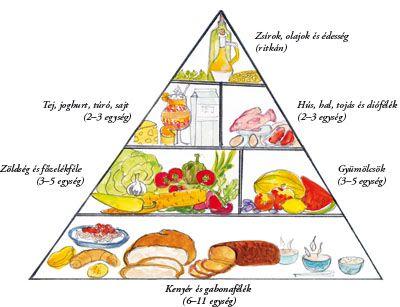Sportorvos   Sporttáplálkozás   Sportolói szempontból kiemelten fontos élelmiszerek, ételek