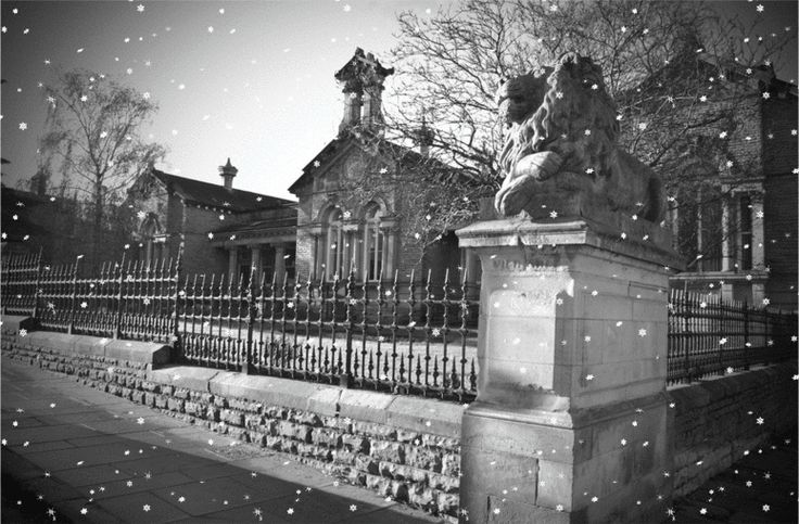 Salt Building in the snow
