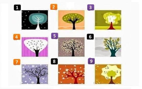 In psicologia, ildisegno dell'alberoè spesso utilizzato per comprendere la personalità dell'uomo. Da tempo, infatti, si ipotizza un'analogia tra la struttura dell'albero e la figura dell'uomo che, inconsciamente, si identifica e proietta in esso. Qui sotto ci sonole immagini di alcuni alberi. Senza pensarci troppo, scegliete quello che più vi piace, confrontando la vostra scelta con la spiegazione riportata più giù.…