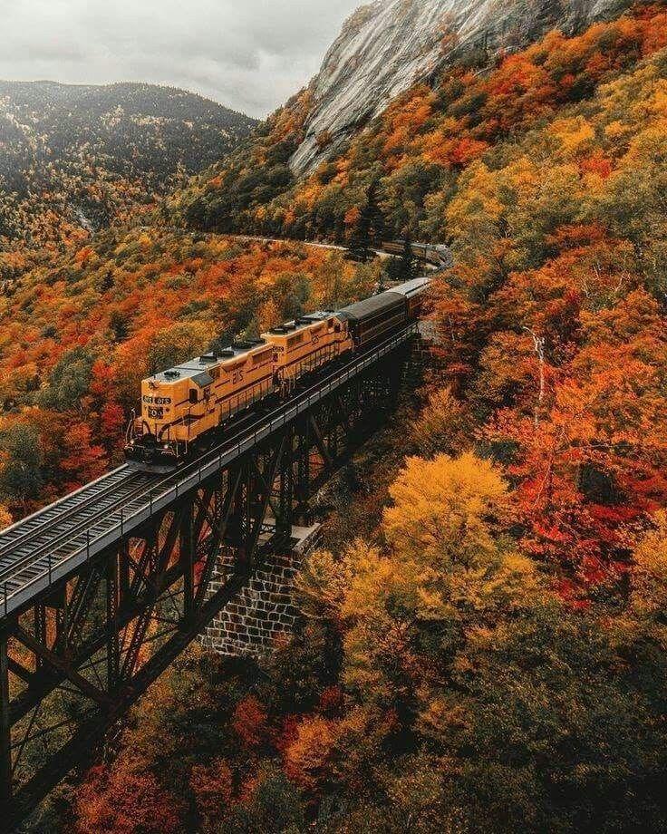 Die besten Reiseziele in Europa für Herbstfarben