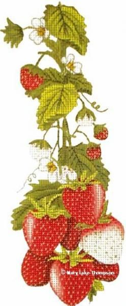 Melissa Shirley Designs | Hand Painted Needlepoint | Strawberries