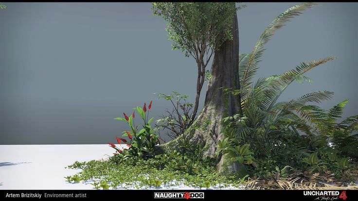 ArtStation - Uncharted 4 - vegetation, Artem Brizitskiy