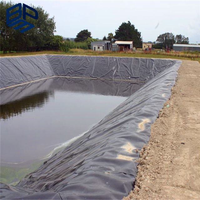 #hdpepondliner About HDPE Pond Liner for Kenya Project www.bpmgeomembrane.com Email:sales1@hdpetgm.com whatsapp:+86 15588500213
