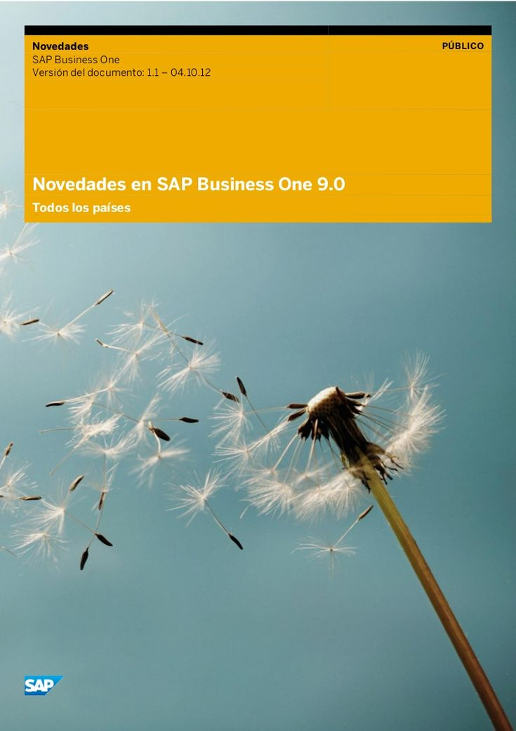 SAP Business One 9.0.
