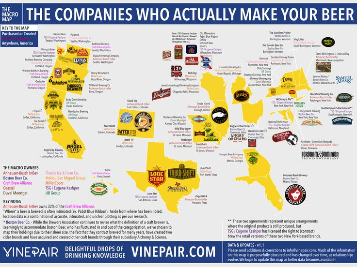 Best Beer Infographics Images On Pinterest Craft Beer Beer - How to make a us map infographic