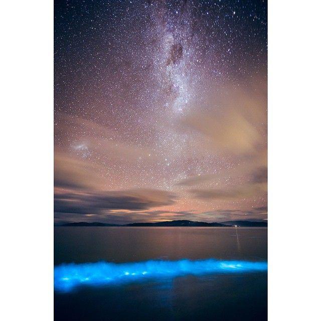 Bioluminescence on the shores of South Arm via https://instagram.com/p/26zb8ZHh4r?utm_content=buffer7592f&utm_medium=social&utm_source=pinterest.com&utm_campaign=buffer #tasmania