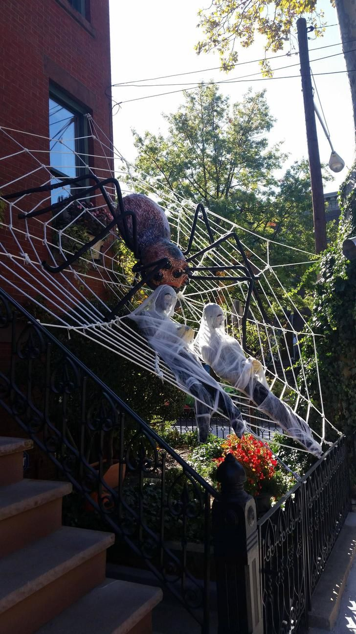 my neighbors take halloween very seriously - Halloween Spider Decorations