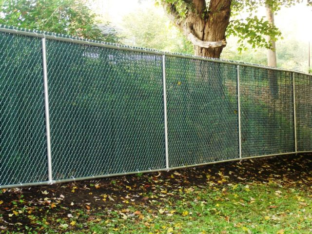 chain link fence with green slating