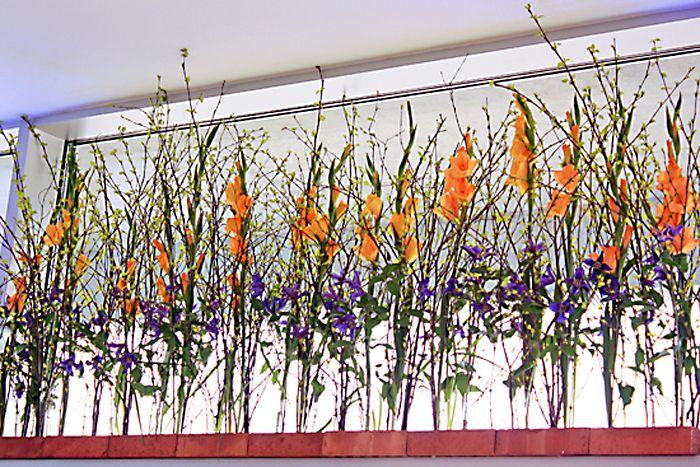 http://holmsundsblommor.blogspot.se/2013/05/blomstrande-rabatter-pa-umevas-kontor.html Blomsterdekorationer till Vattenstämman i Umeå 2013. Gladiolus