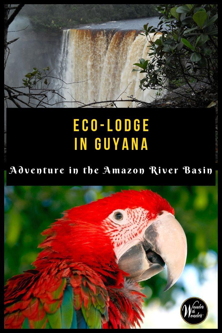 Eco Lodge In Guyana Adventure In The Amazon River Basin World