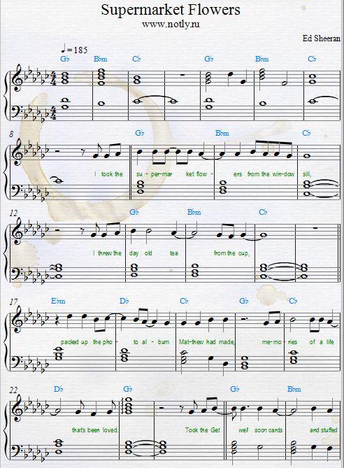 Ed Sheeran — Supermarket Flowers  Piano Sheet Music Download PDF