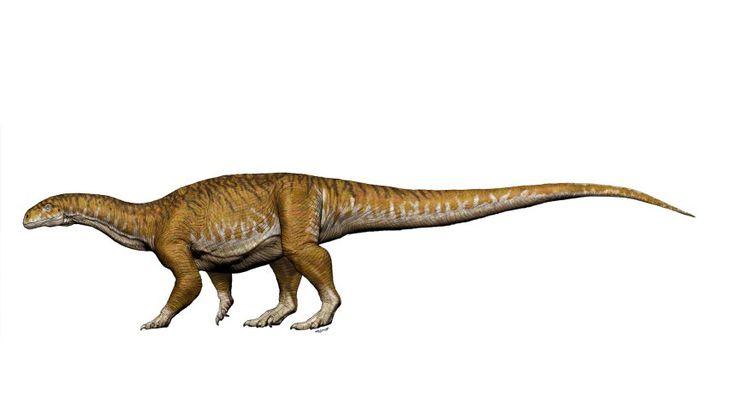 Vorläufer der Riesensaurier: Zehntonner auf krummen Beinen – SPIEGEL ONLINE – W… – Jörg Mührmann