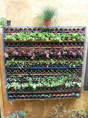 Huerto vertical pallet huertos caseros pinterest pallets and search - Jardin vertical pallet ...